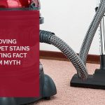 Removing Carpet Stains Sorting Fact From Myth